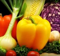 Šiltnamiai geriausia kaina rinkoje, Šiltnamis Jūsų sodui | UAB Vedrana 76